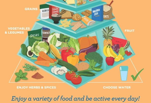 Base of healthy eating pyramid of foods to eat everyday including fruit and veg, grains as well as choosing water and herbs and spices