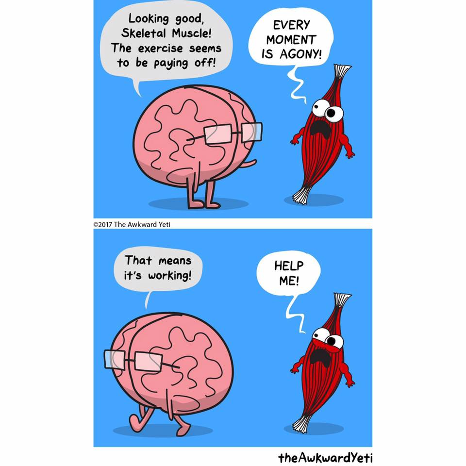 Cartoon of brain character communicating with muscle about pain