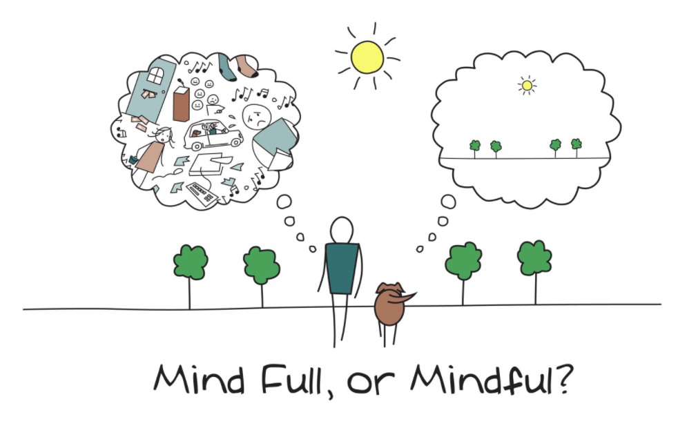 Minf full or Mindful